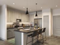 Alexan Springdale Rendering B2a Model Kitchen 1 scaled